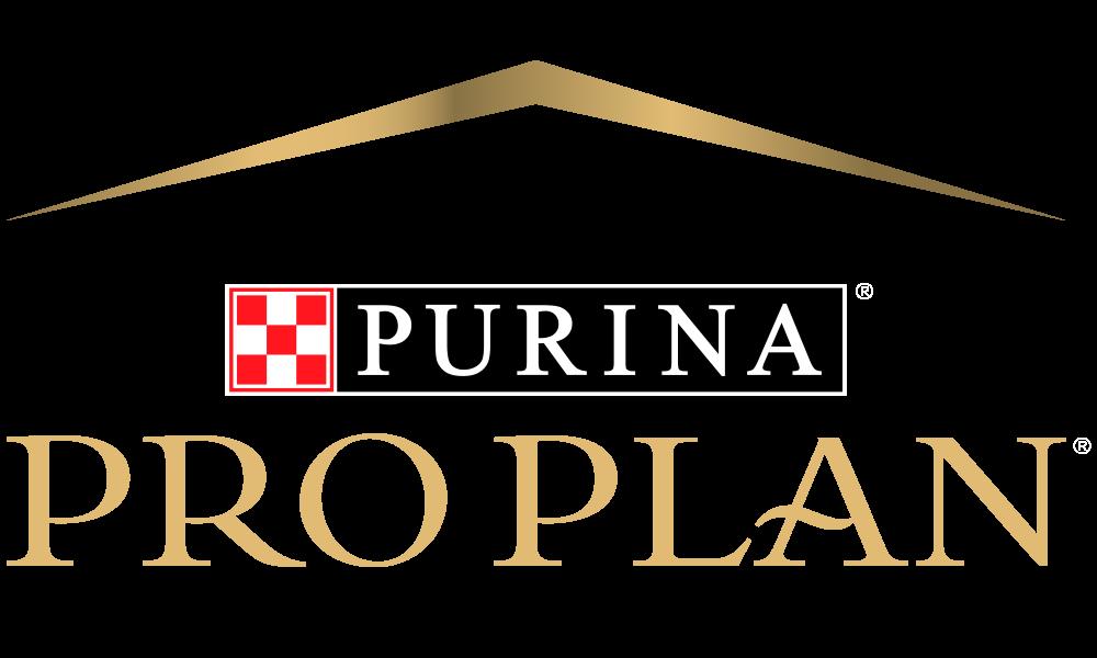 500x300 Pro Plan Logo_1