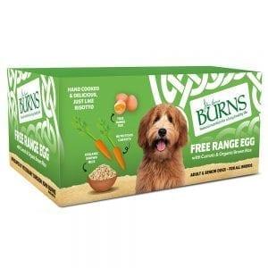 burns dog puppy pet egg