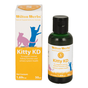 cat pet animal health bottle