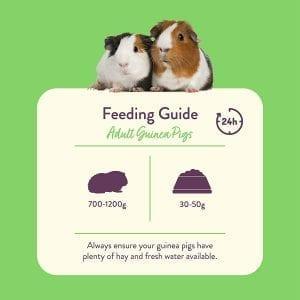 burgess guinea pig food guide